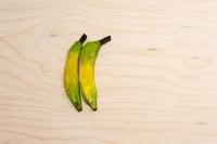 17_ripenot-ripe.jpg