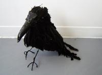 3_crow.jpg