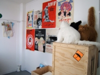 4_props-room-4-web.jpg